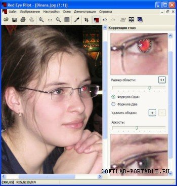 Red Eye Pilot 3.4.1 Portable Rus